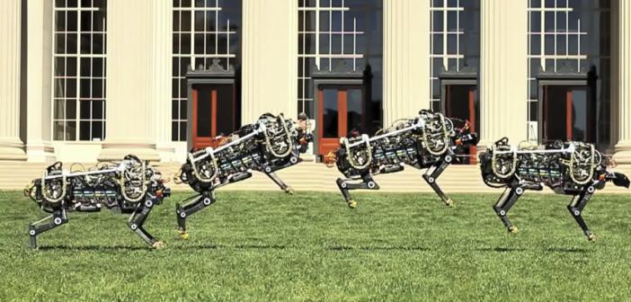 MIT robot jumping